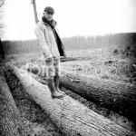 Reportage dans la forêt de Tronçais