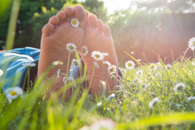 Children's feet in the grass and Daisy